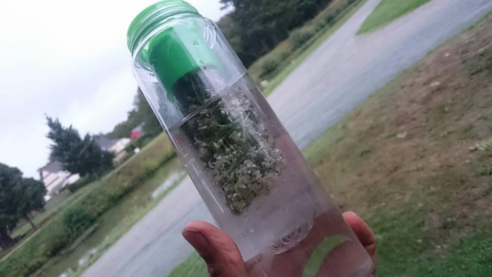 eau florale achilée